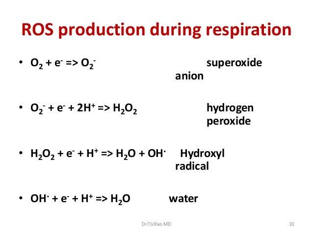 ROS production during respiration• O2 + e- => O2-                                   superoxide                            ...