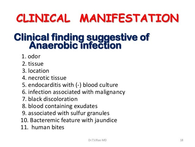 CLINICAL MANIFESTATIONClinical finding suggestive of   Anaerobic infection 1. odor 2. tissue 3. location 4. necrotic tissu...