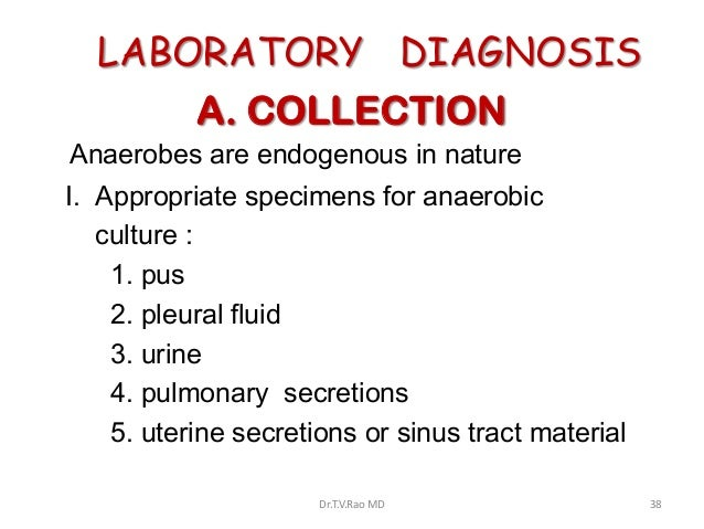 LABORATORY DIAGNOSIS           A. COLLECTIONAnaerobes are endogenous in natureI. Appropriate specimens for anaerobic   cul...