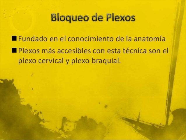 Fundado en el conocimiento de la anatomíaPlexos más accesibles con esta técnica son el plexo cervical y plexo braquial.