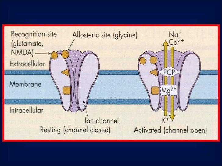Anestésicos InalatóriosApresentam-se sob 2 formas:                              vaporizador              • Líquidos       ...
