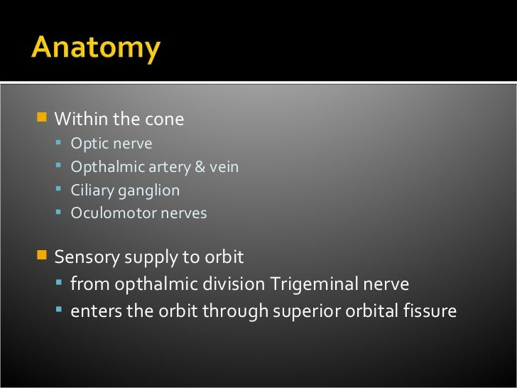    Within the cone       Optic nerve       Opthalmic artery & vein       Ciliary ganglion       Oculomotor nerves   ...