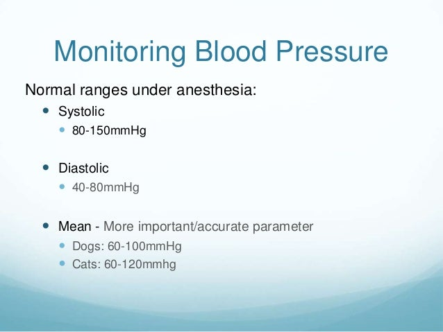 Dog And Cat Normal Blood Pressure Ranges