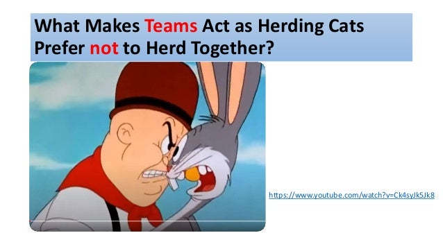 What Makes Teams Act as Herding Cats Prefer not to Herd Together? https://www.youtube.com/watch?v=Ck4syJk5Jk8