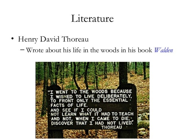 american essay last mohicans new novel Last of the mohicans: a dying generation essayslast of the mohicans: a dying generation the last of the mohicans is one of five novels in the new jersey.