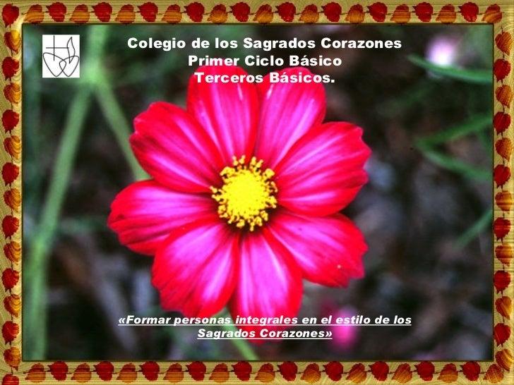 «Formar personas integrales en el estilo de los Sagrados Corazones» Colegio de los Sagrados Corazones Primer Ciclo Básico ...