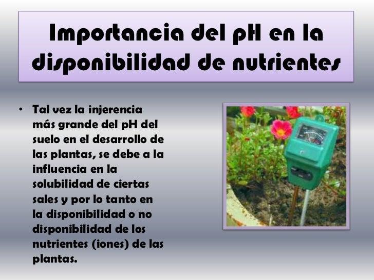 Anexo 42 acidez del suelo 1 for Importancia de los suelos