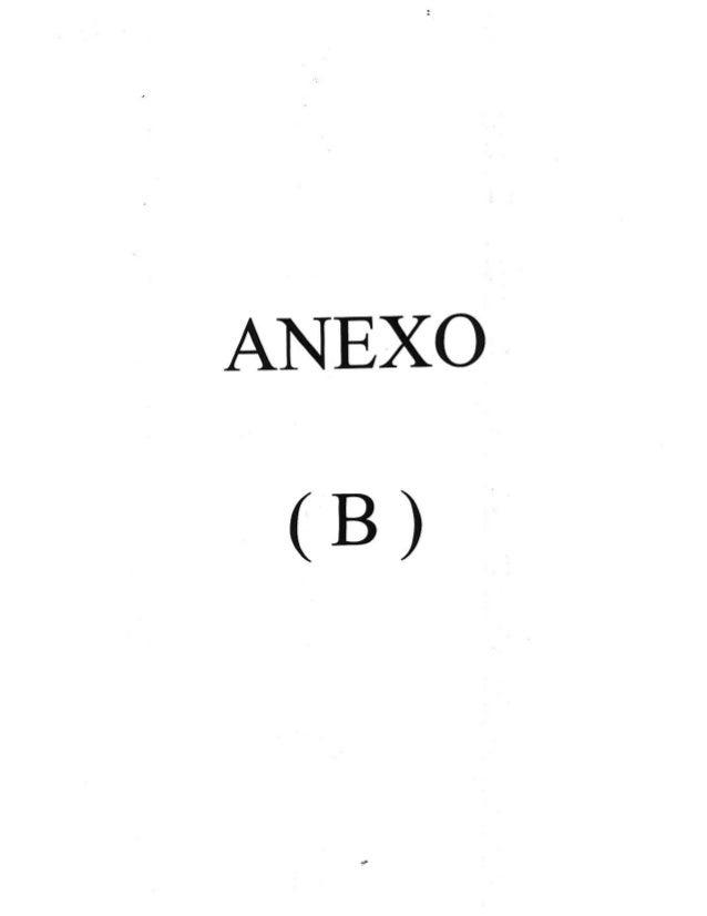 ANEXO (B)