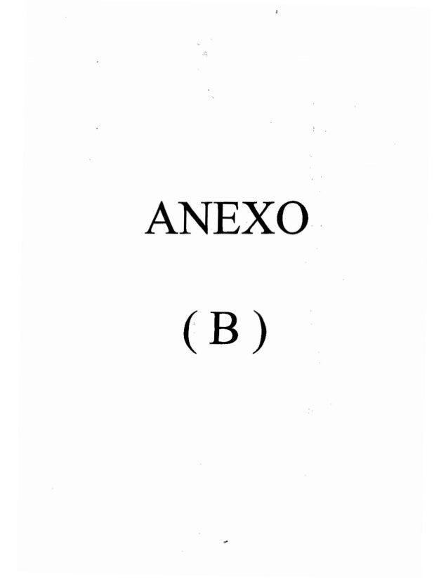 ANEXO (B) &