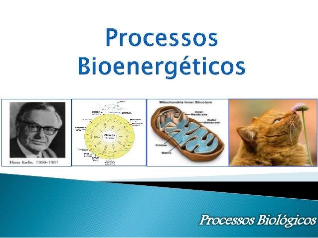 CK  Fernanda - DBQ        Compreender o processo de oxidação da glicose para produção de energia na forma de ATP.  Conh...