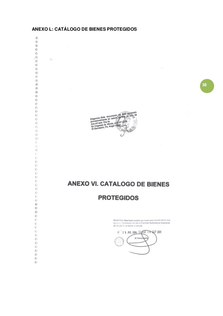 ANEXO L: CATÁLOGO DE BIENES PROTEGIDOS                                         38
