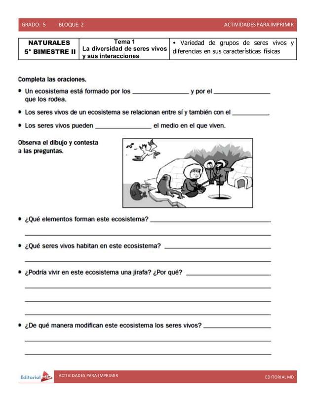 GRADO: 5 BLOQUE: 2 ACTIVIDADESPARA IMPRIMIR ACTIVIDADES PARA IMPRIMIR EDITORIAL MD NATURALES 5° BIMESTRE II Tema 1 La dive...