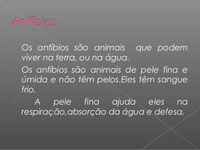  Os anfíbios são animais que podem  viver na terra, ou na água. Os anfíbios são animais de pele fina e  úmida e não têm ...