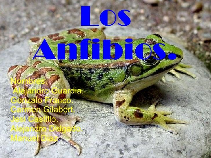 anfibios biologia