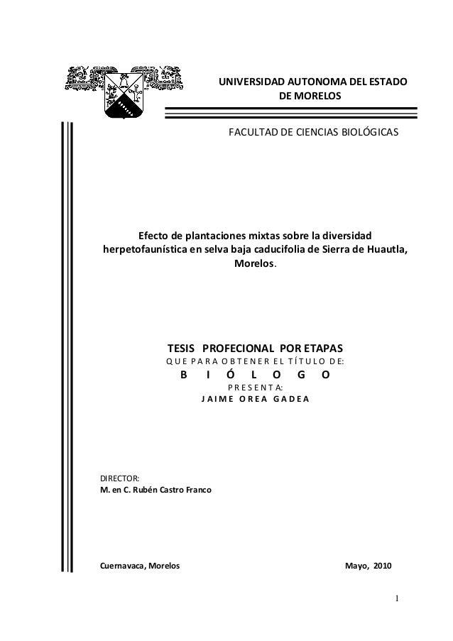 UNIVERSIDAD AUTONOMA DEL ESTADO                                         DE MORELOS                                FACULTAD...