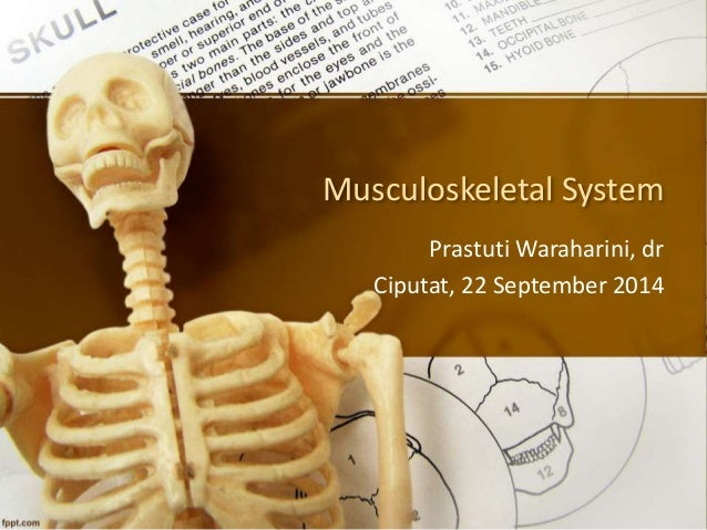 Musculoskeletal System  PrastutiWaraharini, dr  Ciputat, 22 September 2014