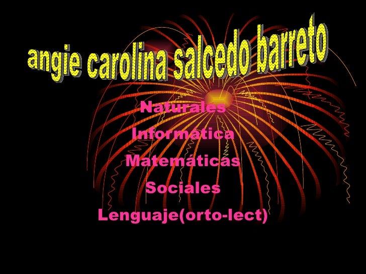 Naturales Informática Matemáticas Sociales Lenguaje(orto - lect ) angie carolina salcedo barreto