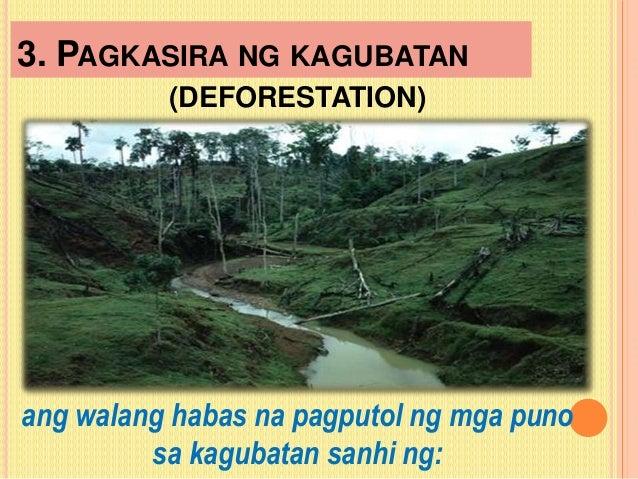 ano ang kaingin Ano ang epekto ng pagkakaingin - crowdsourced questions & answers at okela.