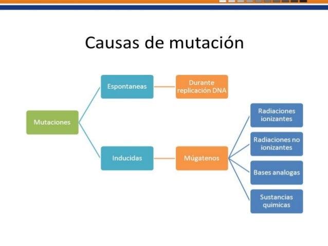 Mutación Génica Son las que alteran la secuencia de nucleótidos de un solo gen, por lo que se denominan puntuales. Tipos d...