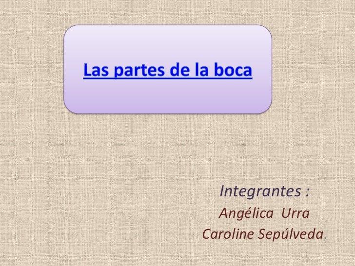 Integrantes :  Angélica UrraCaroline Sepúlveda.