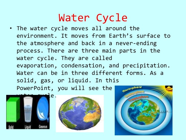Angeline the water cycle