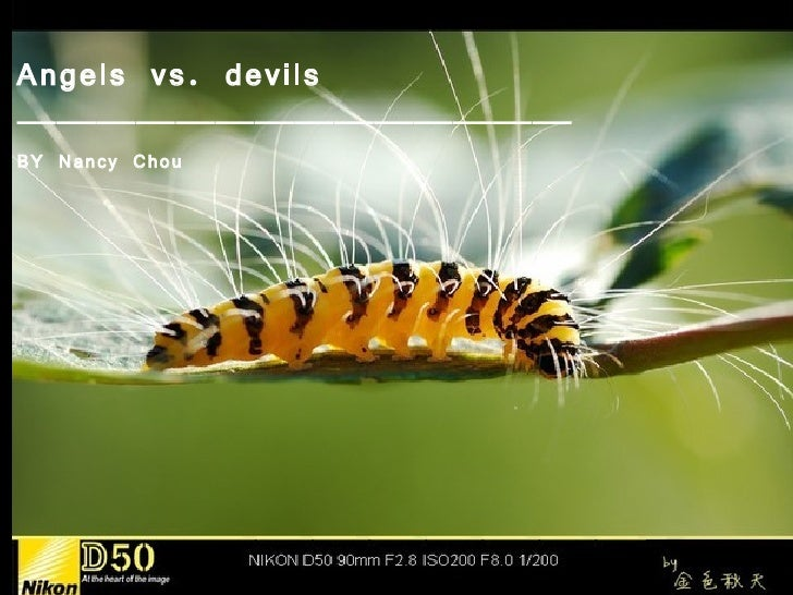 Angels vs. devils——————————————BY Nancy Chou