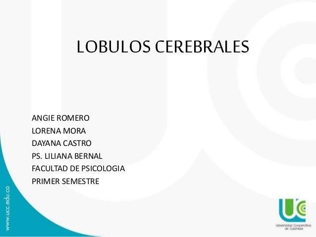 LOBULOS CEREBRALES ANGIE ROMERO LORENA MORA DAYANA CASTRO PS. LILIANA BERNAL FACULTAD DE PSICOLOGIA PRIMER SEMESTRE
