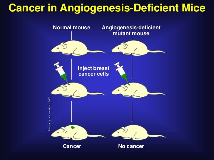 Angiogenesis Inhibitors in the Treatment of Human Cancer         Cancer            cell                   VEGF (or bFGF)  ...