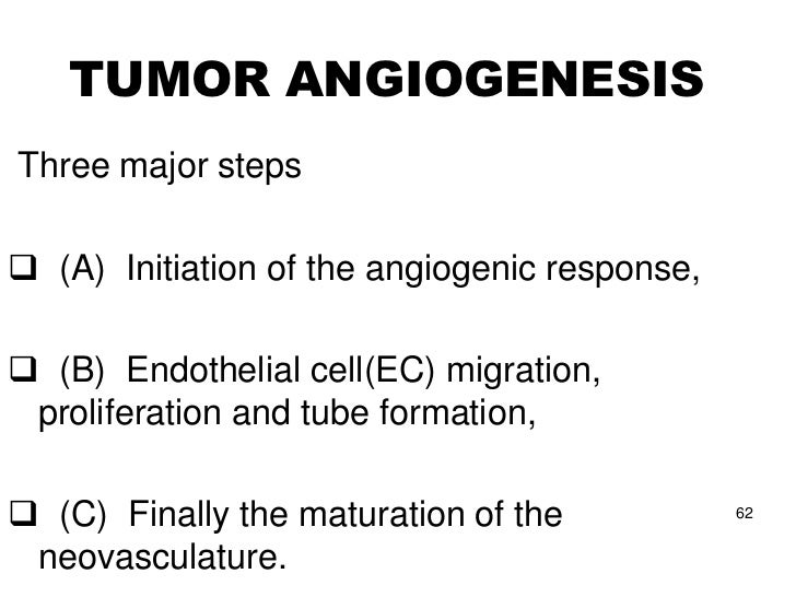 """(b) Endothelial cell migration,   proliferation, and tube formation• The """"leader EC"""" starts migrating and  proliferating• ..."""