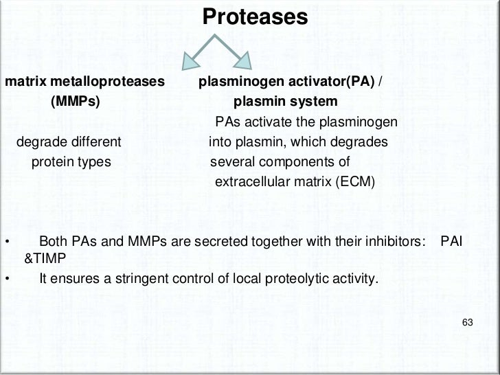 cell adhesion molecules(CAM)• Integrin, cadherin, vascular cell adhesion molecule-  1, P-selectin and E-selectin are impli...