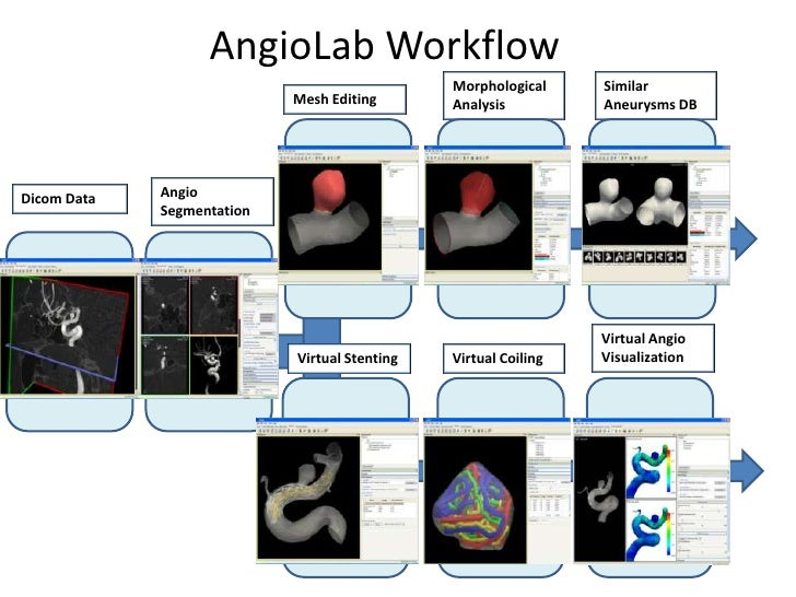 AngioLabWorkflow<br />Similar Aneurysms DB<br />MorphologicalAnalysis<br />MeshEditing<br />AngioSegmentation<br />Dicom D...