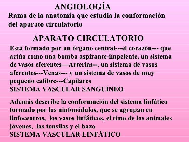 ANGIOLOGÍA Rama de la anatomía que estudia la conformación del aparato circulatorio APARATO CIRCULATORIO Está formado por ...