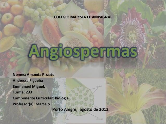 COLÉGIO MARISTA CHAMPAGNATNomes: Amanda PizzatoAndressa FigueiraEmmanuel Miguel.Turma: 233Componente Curricular: BiologiaP...