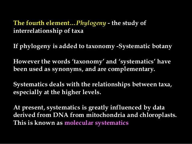 Angiosperm classifications Slide 3