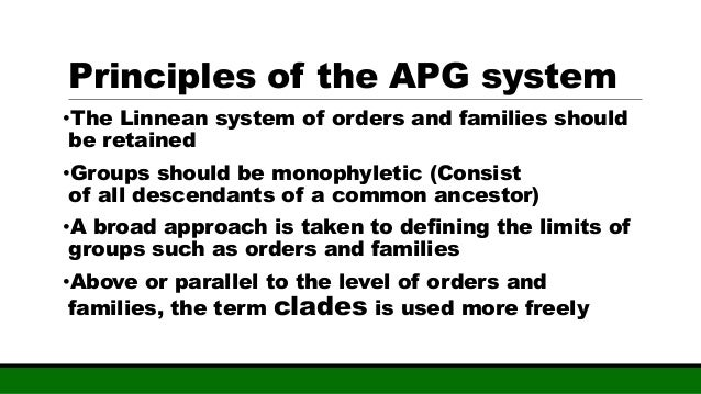 apg system of classification pdf