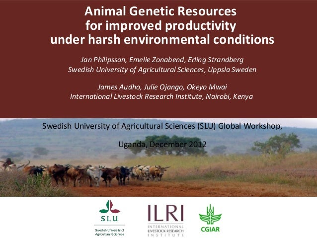 Animal Genetic Resources       for improved productivity  under harsh environmental conditions          Jan Philipsson, Em...
