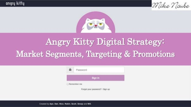 Angry Kitty Digital Strategy: Market Segments, Targeting & Promotions