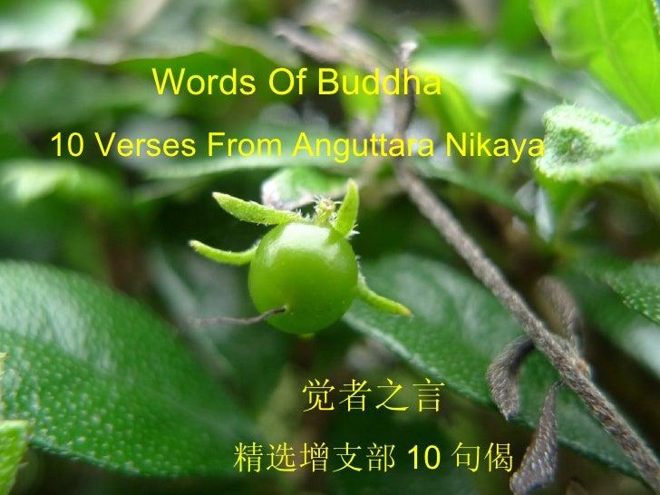 Words Of Buddha 10 Verses From Anguttara Nikaya 觉者之言 精选增支部 10 句偈