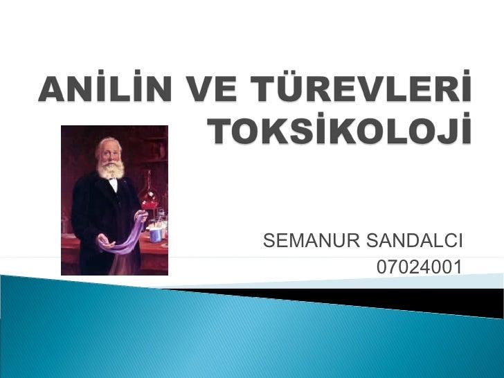 SEMANUR SANDALCI         07024001