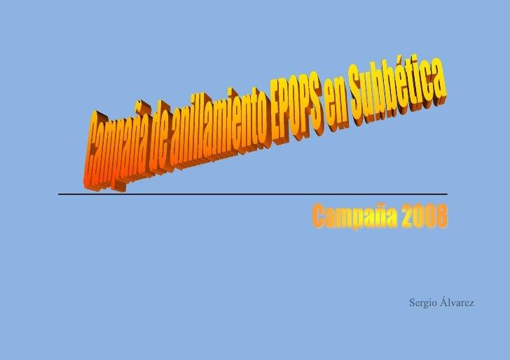 Anillamiento Científico de Aves                                      Temporada 2008       La temporada ha finalizado y es ...