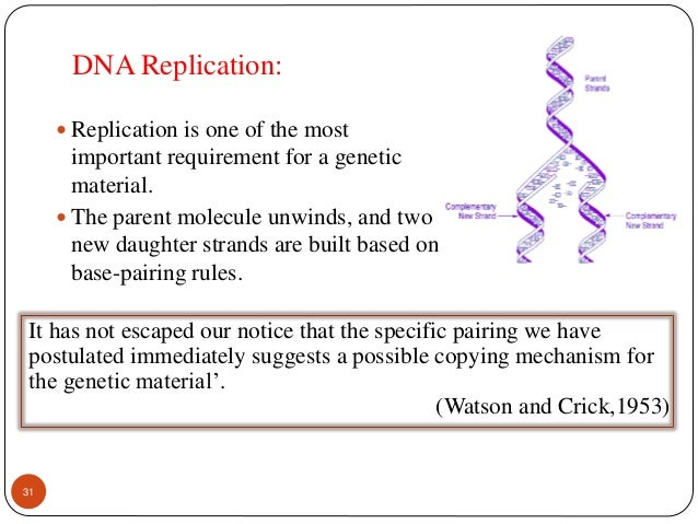 DNA model paper lab  Cut n paste a paper model to help students visualize the