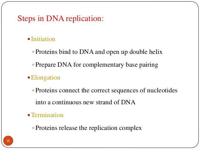 DNA : a genetic material, replication damage and repair