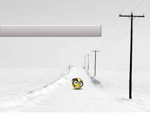 Anim 12 snow
