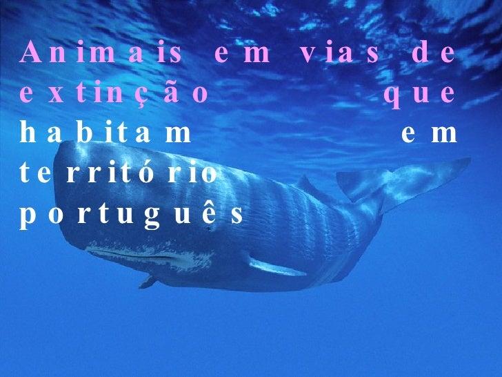Animais em vias de extinção que   habitam em território português