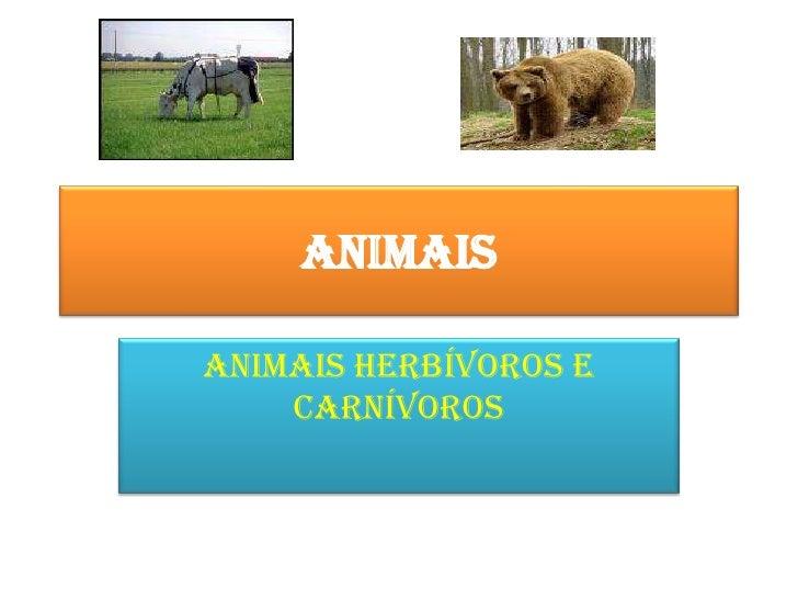 Animais<br />Animais herbívoros e carnívoros<br />