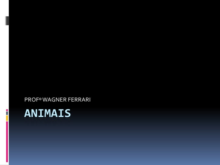 ANIMAIS<br />PROFº WAGNER FERRARI<br />