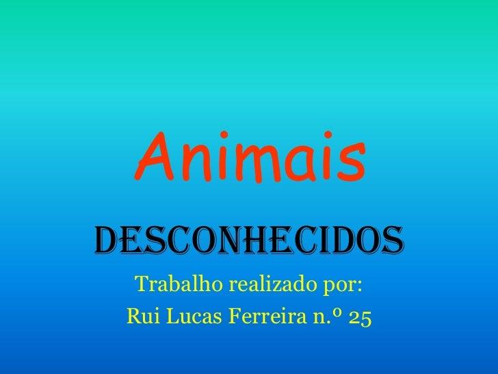 AnimaisDesconhecidos  Trabalho realizado por: Rui Lucas Ferreira n.º 25
