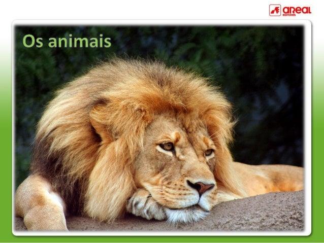 Os animais são seres vivos que nascem, crescem, alimentam-se,reproduzem-se e morrem.Os animais distinguem-se na forma como...