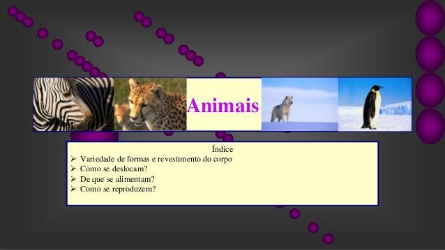 Animais Índice  Variedade de formas e revestimento do corpo  Como se deslocam?  De que se alimentam?  Como se reproduz...