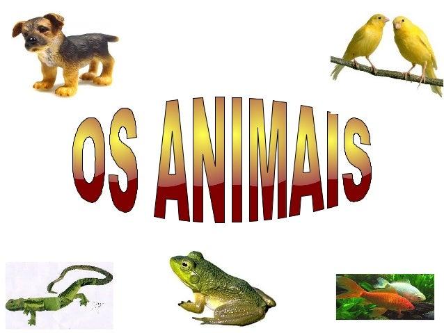 FUNCIÓNS VITAIS: A NUTRICIÓN ● Carnívoros os que comen carne. ● Preeiros os que comen cadáveres. ● Detritívoros os que com...